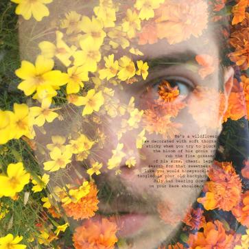 He's a wildflower